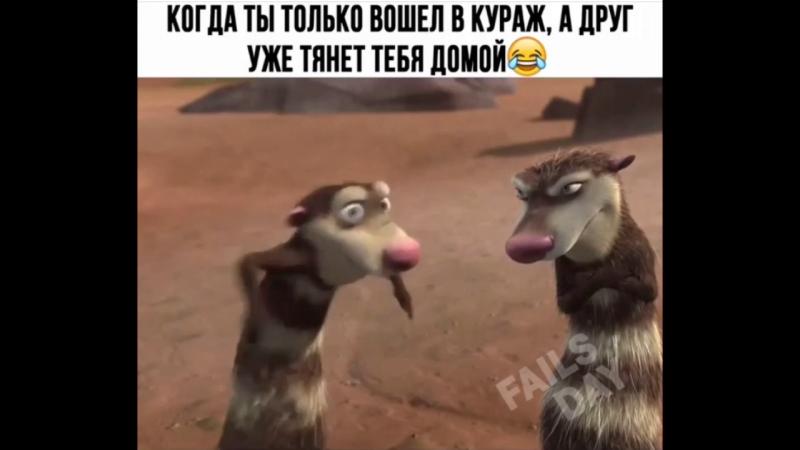 Когда ты только вошел в кураж, а друг уже тянеттебя жомой )) Instamusor