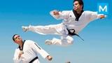 Insane Taekwondo Master - Cezar Galvao Muscle Madness