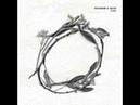 Marco Passarani and Sacco - Flora Villalobos and Melchior Fauna remix