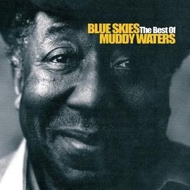 Muddy Waters альбом Blue Skies - The Best Of Muddy Waters