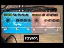 Strymon Timeline Reverse Oscillation