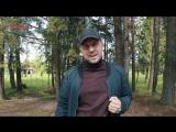 Отзыв о Звездном от Руслана Мамедова