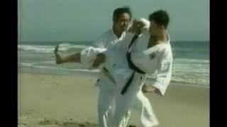 Uchinadi The Original Karate of Okinawa Vol 1 Toshihiro Oshiro