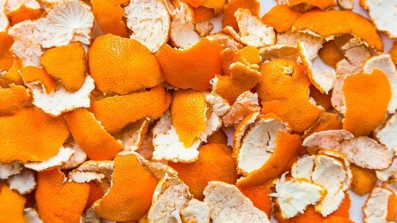 Du Wirst Nie Wieder Orangenschalen Wegwerfen Nachdem Du Dies Gesehen Hast