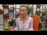 Светлана Ковалёва о BCFD 28.07