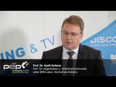 Agile Experte Prof Dr Ayelt Komus