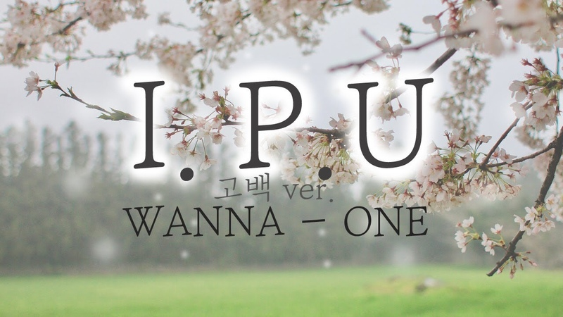 Wanna One (워너원) - 약속해요 (I.P.U.) (Propose Ver.) 고백 Ver. ( cover by suggi )
