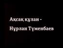 Ақсақ құлан - Нұрлан Түменбаев