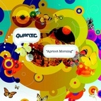 Quantic альбом Apricot Morning