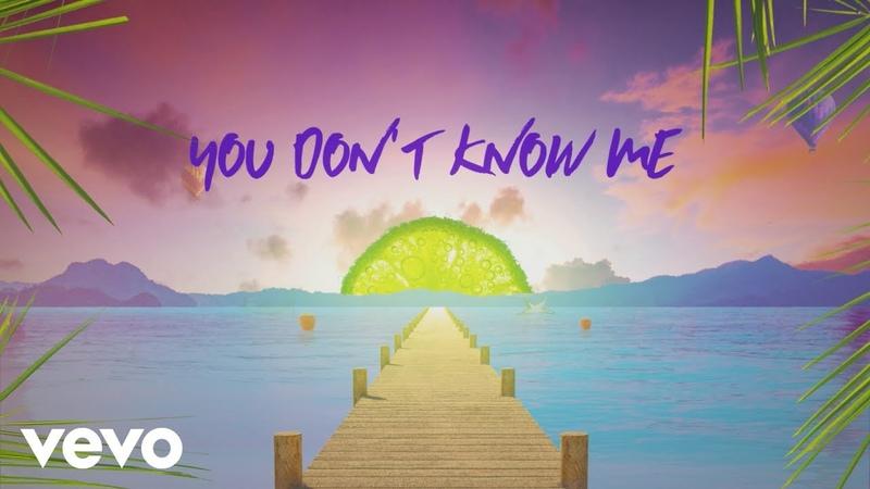 Sigala, Shaun Frank, Flo Rida - You Don't Know Me (Lyric Video) ft. Delaney Lane
