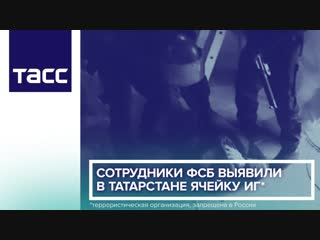Сотрудники ФСБ выявили в Татарстане ячейку ИГ