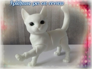 Iplehouse bjd pet cat doll box opening, review and comparison