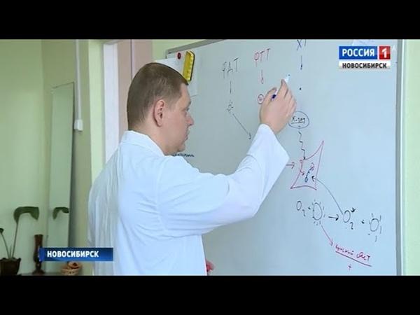 Ученые Новосибирского Академгородка работают над новым способом лечения рака