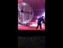 Регина Шушпанова - Live