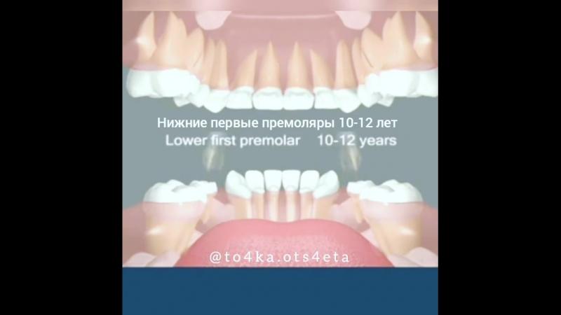 Смена зубов у детей.