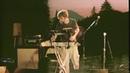 Birds in the Window - Jack Stauber (LIVE)