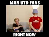 We all know a ManUtd who will be a bit sheepish tomorrow...