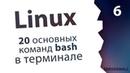 6. Команды bash и основные программы / Linux