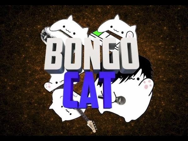 Bongo Cat - Nena Irgendwie, irgendwo, irgendwann