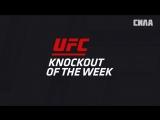 KO of the Week Thiago Santos vs Jack Marshman