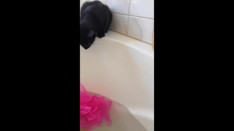 Клео у ванній