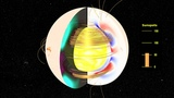 The Solar Dynamo Toroidal and Poloidal Magnetic Fields