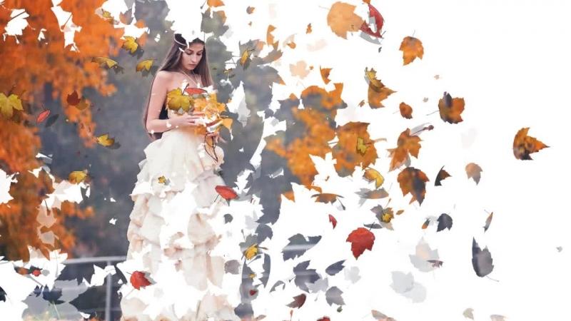 Бесплатный проект Осень золотая для Proshow Producer