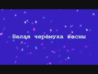 Русский Стилль - Белая черёмуха весны
