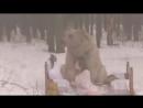 Фотосессия с медведем в России
