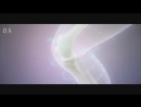 Video 4baa15e15fa58325222ae22da9ecde0e