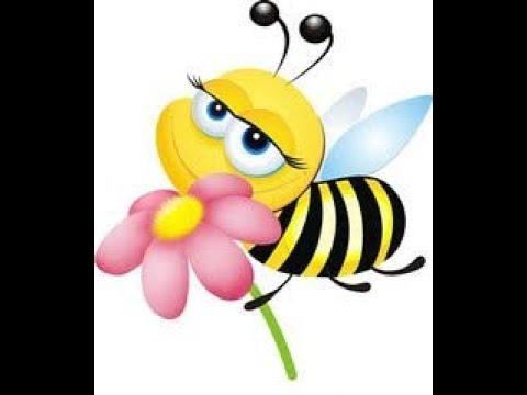 №310 Будь пчелкой, не мухой. - рав Даниэль Булочник