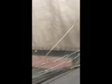 Инспектор ГИБДД помогает бабушке перейти дорогу в Ельце
