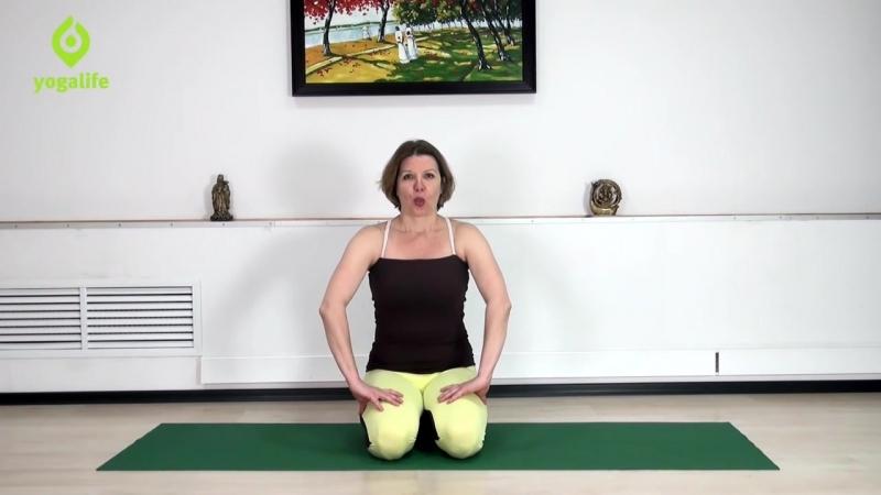 Как спастись от жары и охладиться летом Ситали пранаяма - охлаждающее дыхание. Yogalife