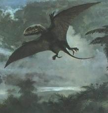 УЖАС СОВРЕМЕННЫХ ЯЩЕРОВ 65 миллионов лет назад закончился период царствования летающих ящеров. Так гласит официальная версия истории нашей планеты. Но на разных континентах люди до сих пор