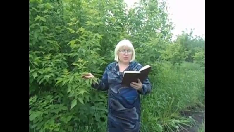 Татьяна Владимировна Петрова из села Юрловка Тамбовской области читает «Асю»