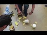 Кокаин в ананасах