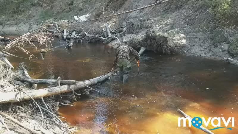 Река Мойка 2019