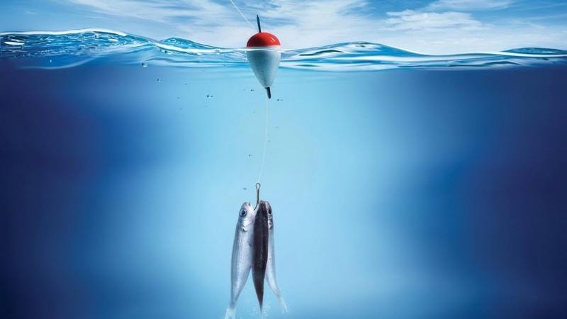 🔔 [Simych] - Русская рыбалка 4 - копим 1