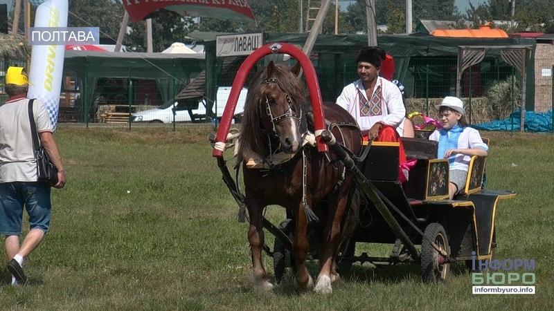 На Полтавщині урочисто відкрили 20 й ювілейний Сорочинський ярмарок