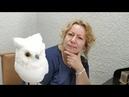 Ветеринар Онлайн (21.06.18) часть 1