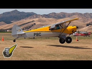 Extreme STOL Landing by Carbon Cub In Windy Conditions