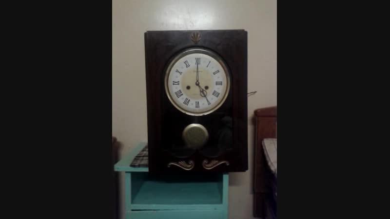 Video-2018-11-30-16-54-34.mp4