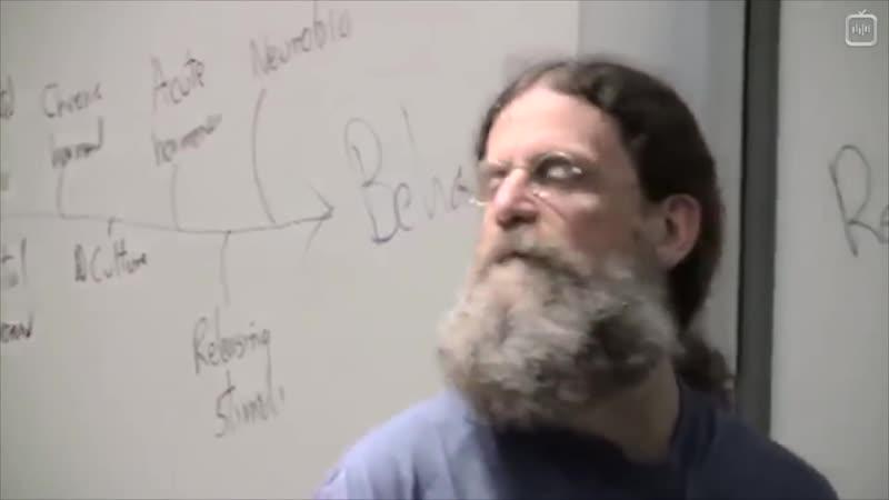 Сексуальное поведение, І (Биология поведения человека, Лекция 15) [Роберт Сапольски, 2010. Стэнфорд]