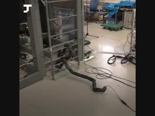 В Японии создали робота-змею, которая может залезть по лестнице