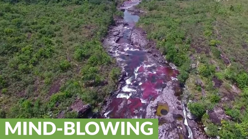 Amazing drone footage of Caño Cristales Colombia