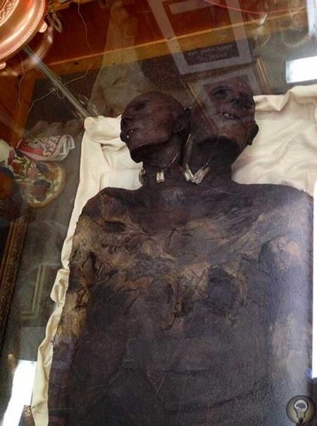 В Патагонии ученые-археологи обнаружили мумию 3,5-метрового человека-гуманоида