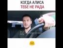 Когда Алиса тебе не рада)