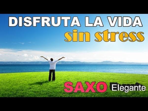 DISFRUTA LA VIDA SIN STRESSSAXO ELEGANTE