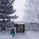 Алёна Высотская фото #33
