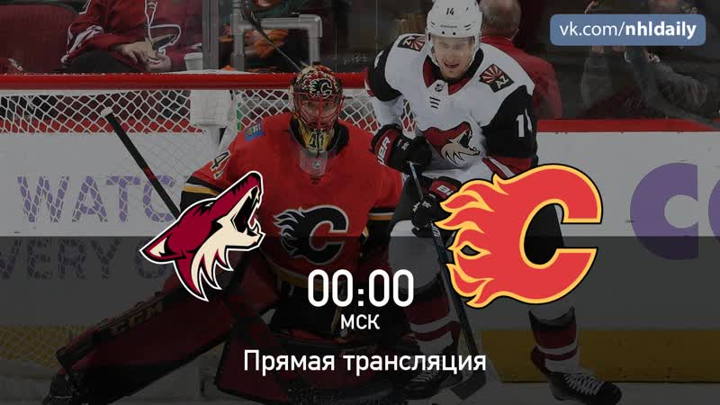 Arizona Coyotes 🆚 Calgary Flames